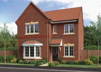 "Thumbnail 4 bed detached house for sale in ""Calver"" at Milldale Road, Farnsfield, Newark"