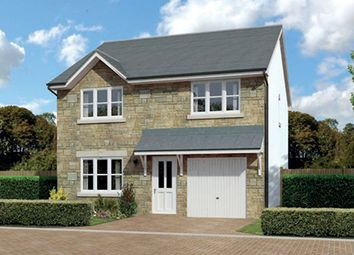 "Thumbnail 4 bedroom detached house for sale in ""Denewood"" at Harrowslaw Drive, Hamilton"