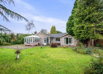 Thumbnail 4 bedroom detached bungalow for sale in Folks Close, Haxby, York