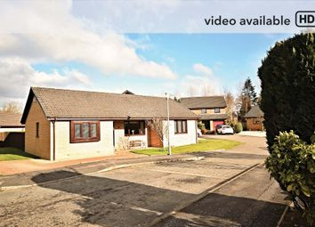 Thumbnail 3 bed bungalow for sale in Overmills Road, Ayr