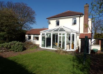 Thumbnail 4 bed detached house to rent in Shaws Lane, Hexham