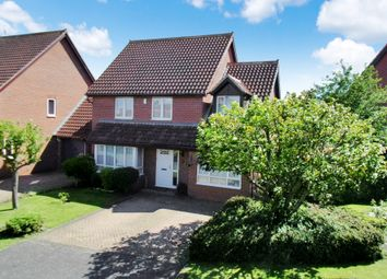 Thumbnail 4 bed detached house for sale in Avocet Close, Sandy