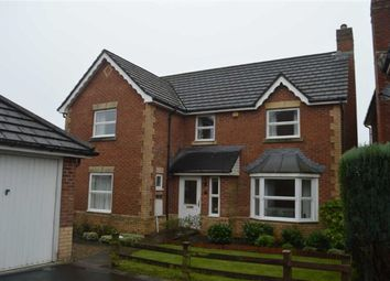 Thumbnail 4 bed detached house for sale in Coedfan, Swansea
