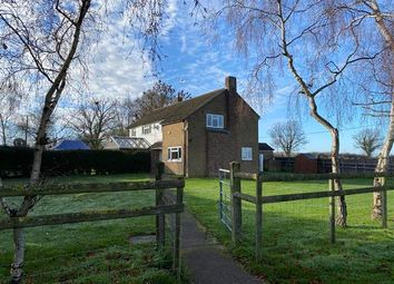 Thumbnail 3 bed semi-detached house to rent in Main Road North, Dagnall, Berkhamsted