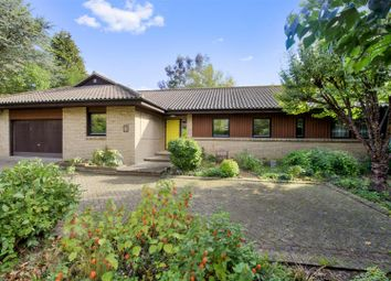 Thumbnail 4 bed detached bungalow for sale in Braefield, Hemingford Abbots, Huntingdon