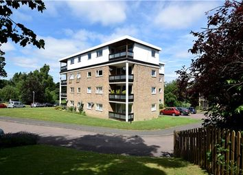 Thumbnail 2 bed flat for sale in Ferndale Close, Tunbridge Wells, Kent