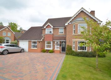 Thumbnail 4 bed detached house for sale in Cambium Close, Kettering