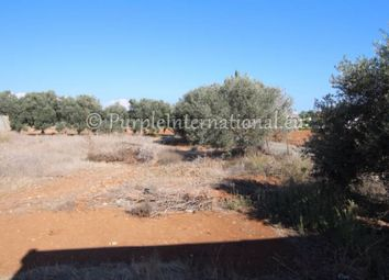 Thumbnail Land for sale in Pernera, Cyprus