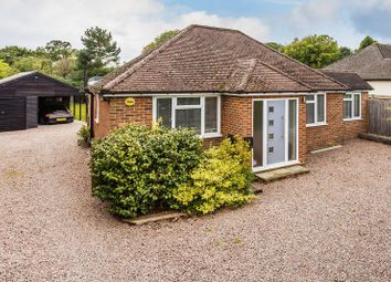 Thumbnail 4 bed detached bungalow for sale in Highland Road, Beare Green, Dorking