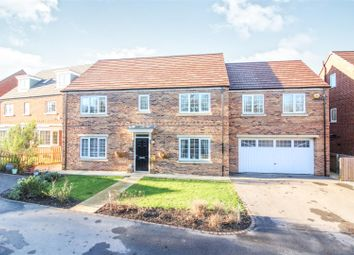 Thumbnail 5 bed detached house for sale in Aspen Way, Beverley