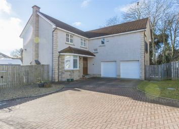 Thumbnail 5 bed detached house for sale in Ross Avenue, Perth, Perthshire