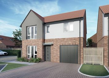 Thumbnail 4 bed detached house for sale in The Hamsterly, North Sands, Hartlepool