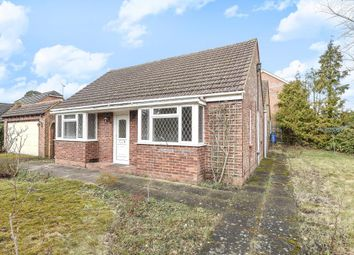 Thumbnail 4 bed detached bungalow to rent in Ascot, Berkshire