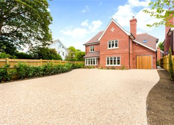 Thumbnail 5 bed detached house for sale in Summersdale, Chichester, West Sussex