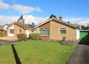 Thumbnail 3 bed detached bungalow for sale in Easton-In-Gordano, North Somerset