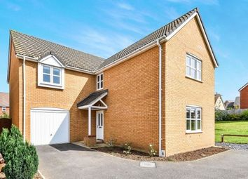 Thumbnail 4 bed detached house to rent in Pinto Close, Downham Market
