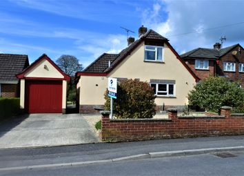 Thumbnail 3 bedroom detached bungalow for sale in Belmont Close, Shaftesbury
