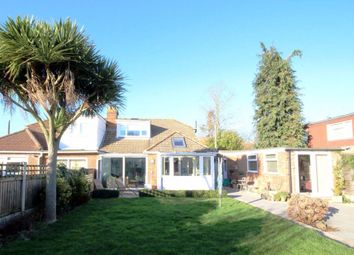 Thumbnail 2 bed bungalow to rent in Chestnut Drive, Worth, Deal