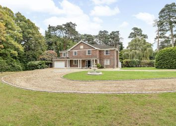 Thumbnail 6 bed detached house for sale in Westwood Road, Windlesham