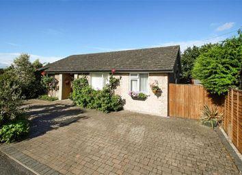 Thumbnail 3 bedroom detached bungalow for sale in Avenue Close, Liphook, Hampshire