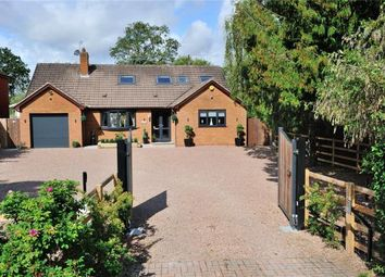 Thumbnail 4 bed detached bungalow for sale in Church Road, Bradley Green, Redditch