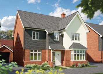 "Thumbnail 5 bed detached house for sale in ""The Birch"" at Hadham Road, Bishop's Stortford"