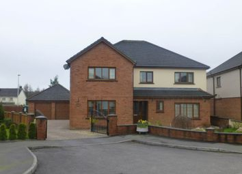 Thumbnail 6 bed detached house to rent in Gwynfan, Nantycaws, Carmarthen