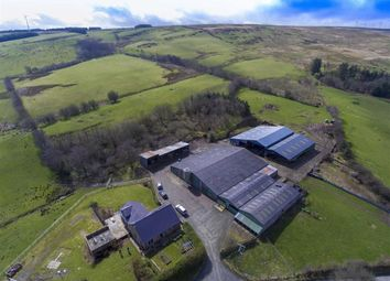 Thumbnail Land for sale in Cefn Coch, Welshpool