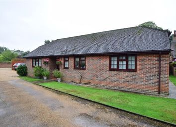 Thumbnail 3 bed bungalow for sale in Green Bank, Barnham, West Sussex
