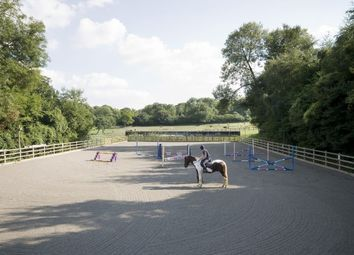 Thumbnail 2 bed equestrian property for sale in Hurst Lane, Headley
