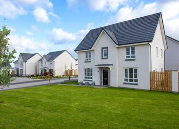 """Thumbnail 4 bed detached house for sale in """"Craigston"""" at Corsehill Crescent, Hamilton"""