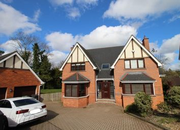 Thumbnail 5 bed detached house for sale in Millvale Wood, Hillsborough