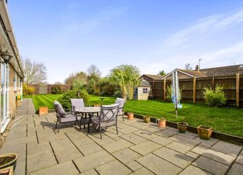Thumbnail 4 bedroom bungalow for sale in Witchford, Ely, Cambridgeshire