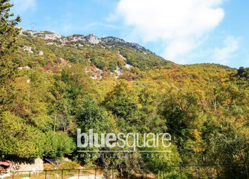 Thumbnail 8 bed property for sale in Courmes, Alpes-Maritimes, 06620, France