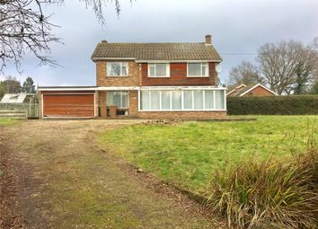 Thumbnail 4 bed detached house for sale in The Common, Galleywood, Chelmsford, Essex