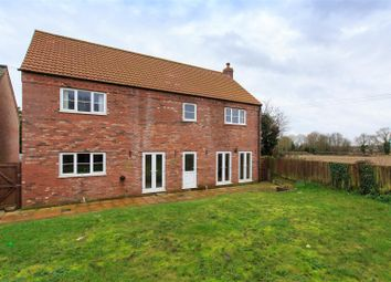 Thumbnail 5 bedroom detached house for sale in Melton Close, Beetley, Dereham