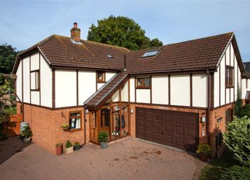 Thumbnail 4 bed detached house for sale in Maple Mews, East Budleigh Road, Budleigh Salterton, Devon