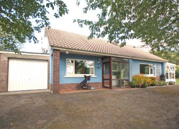 Thumbnail 4 bed bungalow for sale in Goginan, Aberystwyth