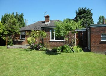 Thumbnail 2 bed detached bungalow to rent in Beenham, Reading