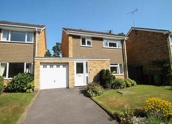 Thumbnail 3 bed detached house to rent in Shildon Close, Camberley, Surrey