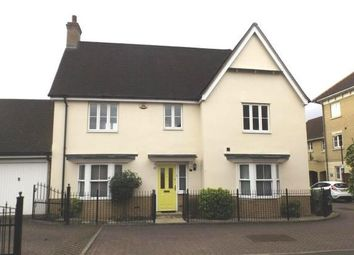 Thumbnail 4 bed property to rent in Ridgewell Avenue, Chelmsford