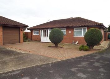 Thumbnail 3 bed bungalow for sale in Elm Tree Avenue, Walton On The Naze