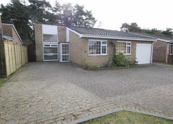 Thumbnail 3 bed detached bungalow to rent in Ivy Close, Ringwood, Hampshire