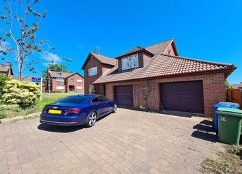 Thumbnail 4 bed detached house for sale in Beechfield Drive, Bangor