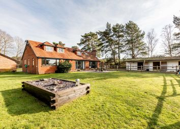 Thumbnail 5 bedroom detached house for sale in St Leonards, Ringwood