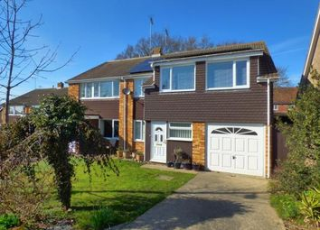 Thumbnail 4 bed detached house for sale in Colchester, Essex