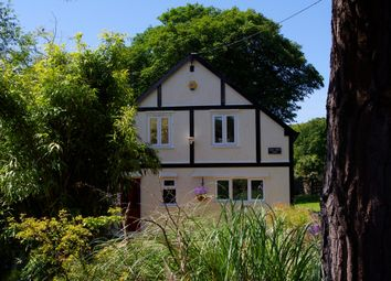 Thumbnail 3 bed detached house to rent in Perrancoombe, Perranporth