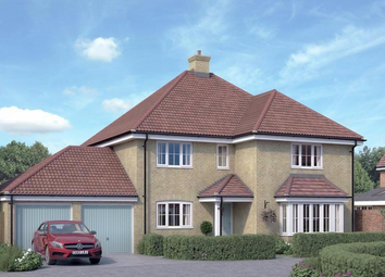 Thumbnail 5 bed detached house for sale in The Oak, Runwell Road, Runwell, Essex