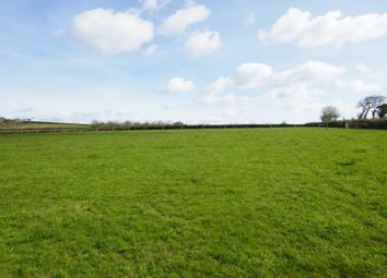 Thumbnail Equestrian property for sale in (Lots 1 & 2), Brazacott, Launceston
