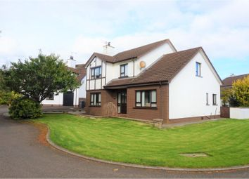 Thumbnail 5 bed detached house for sale in Farm Lodge Way, Greenisland